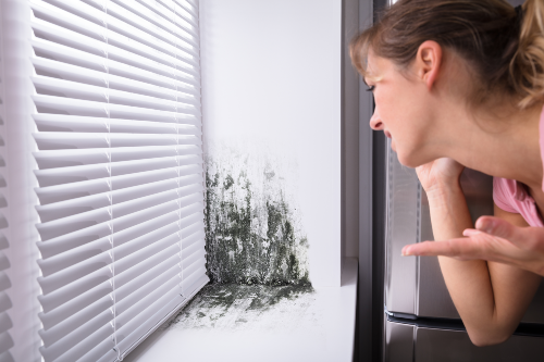 woman calling mold experts while looking at mold growth